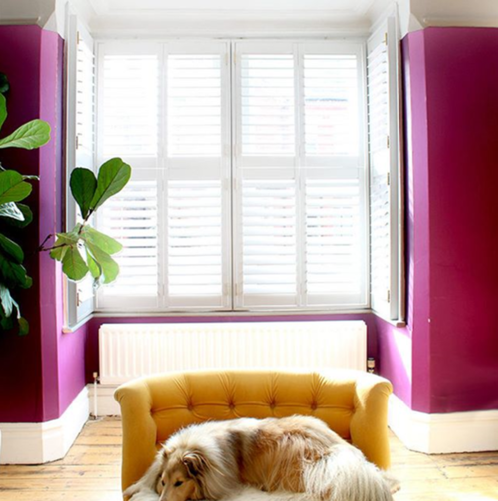 pink-room-with-white-tier-on-tier-shutters.png